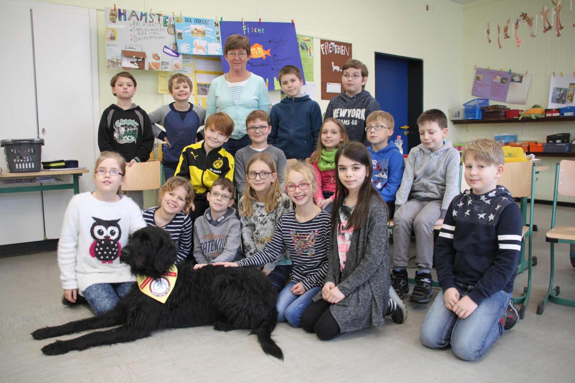 Schulhund 2
