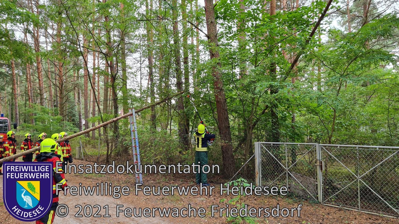 Einsatz 123/2021 | Baum in Telefonleitung | Friedersdorf Straße Nr. 4 | 23.09.2021