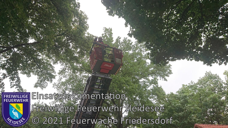 Einsatz 108/2021 | Ast droht zu stürzen | Dolgenbrodt Bindow Allee | 17.08.2021