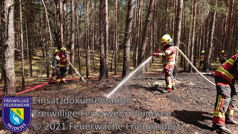 Einsatz 95/2021 | 300m² Waldbodenbrand | Friedersdorf Wettenweg | 31.07.2021