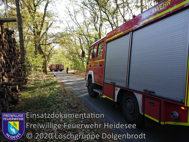 Einsatz 143/2020 | Baum droht zu stürzen | OV Dolgenbrodt - Bindow | 03.11.2020