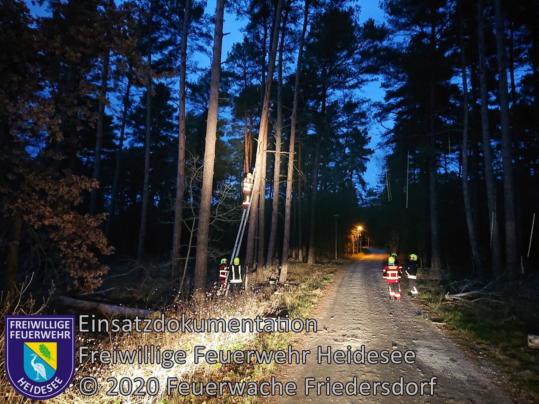 Einsatz 146/2020 | Baum auf Straße | Friedersdorf Straße Nr. 2 | 19.11.2020