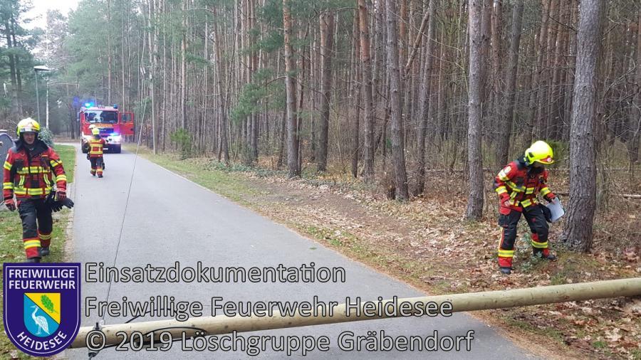 Einsatz 169/2019 | Telefonmast auf Straße | Gräbendorf Am Dolgenhorst | 02.12.2019