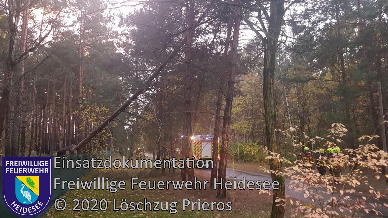 Einsatz 142/2020 | Baum droht zu stürzen | Prieros An der Dubrow | 02.11.2020