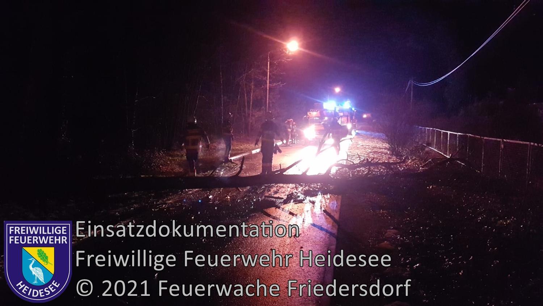 Einsatz 12/2021 | Baum auf Straße | Wolzig Blossiner Weg | 04.02.2021