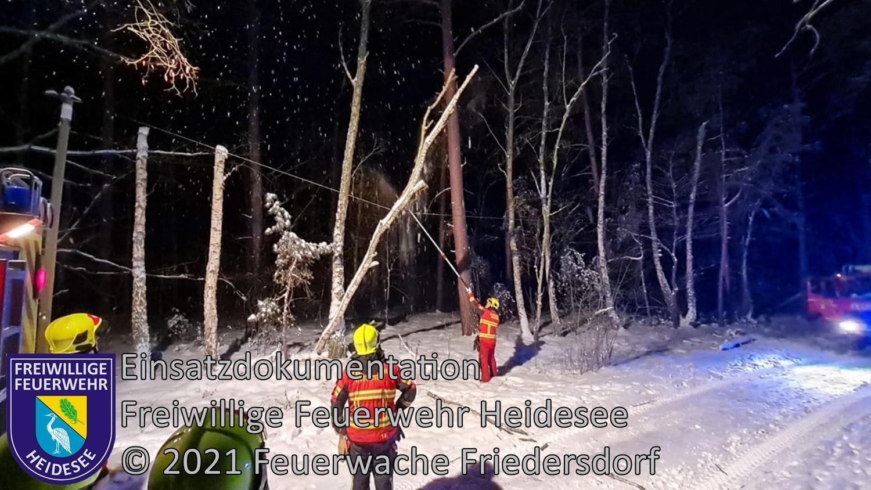 Einsatz 17/2021 | Baum in Telefonleitung | Friedersdorf Wilhelmstraße | 09.02.2021