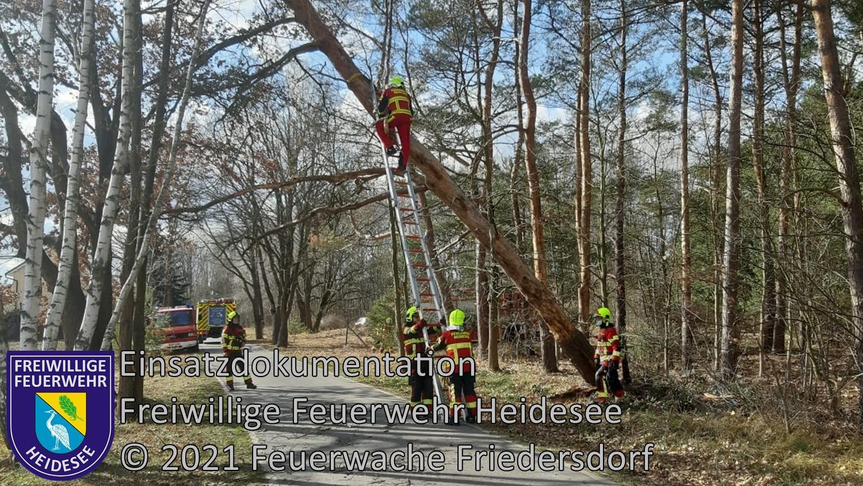 Einsatz 24/2021 | Baum droht zu stürzen | Bindow Alte Poststraße | 12.03.2021
