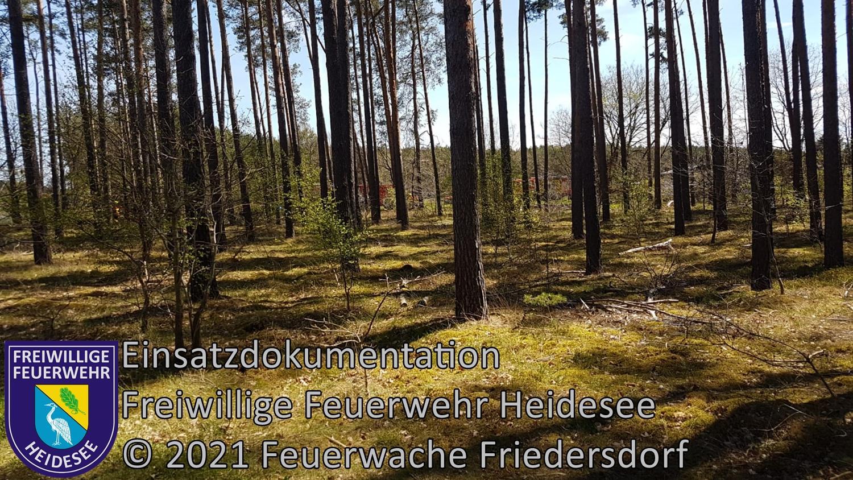 Einsatz 51/2021 | 500m² Waldbodenbrand | Friedrichshof Eichenweg | 09.05.2021