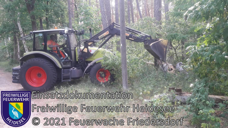 Einsatz 61/2021 | Baum auf Straße | Friedersdorf Wilhelmstraße | 11.06.2021
