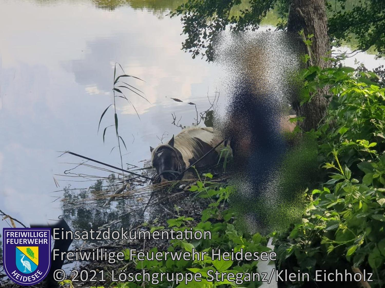 Einsatz 68/2021 | Pferd steckt in See fest | Streganz Gutssee | 26.06.2021
