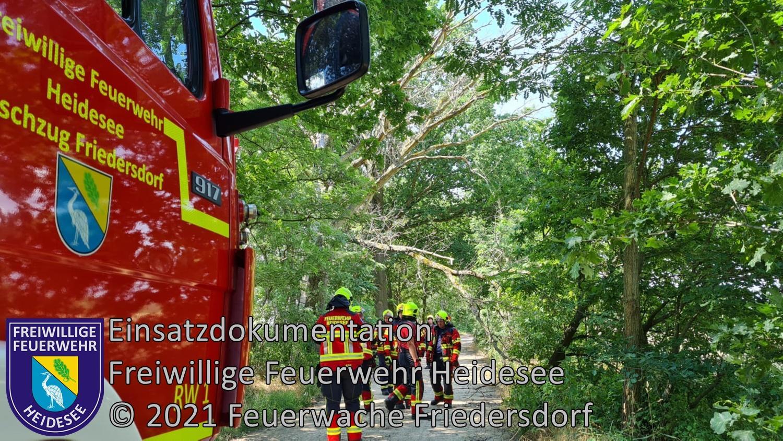 Einsatz 77/2021 | Baum über Straße | Friedersdorf Mühlenstraße | 11.07.2021