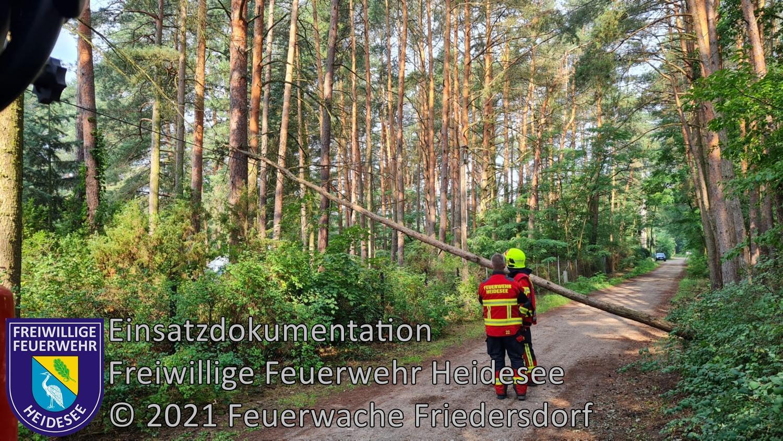 Einsatz 91/2021 | Baum in Telefonleitung | Friedersdorf Straße Nr. 4 | 26.07.2021