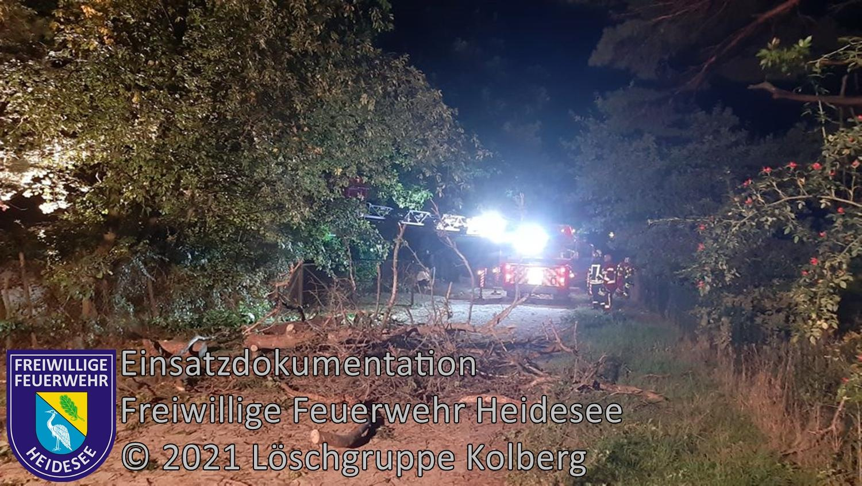 Einsatz 124/2021 | Baum droht zu stürzen | Kolberg Kurze Straße | 24.09.2021
