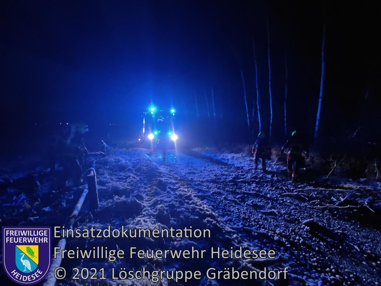 Einsatz 11/2021 | Baum auf Straße | Gräbendorf Senziger | 14.01.2021