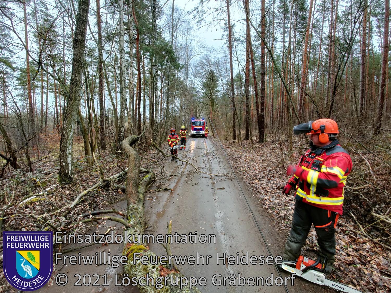 Einsatz 25/2021 | Baum auf Straße | Gräbendorf Alte Ziegelei | 13.03.2021