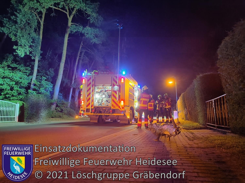 Einsatz 93/2021 | Baum auf Straße | Gussow Am Badestrand | 29.07.2021