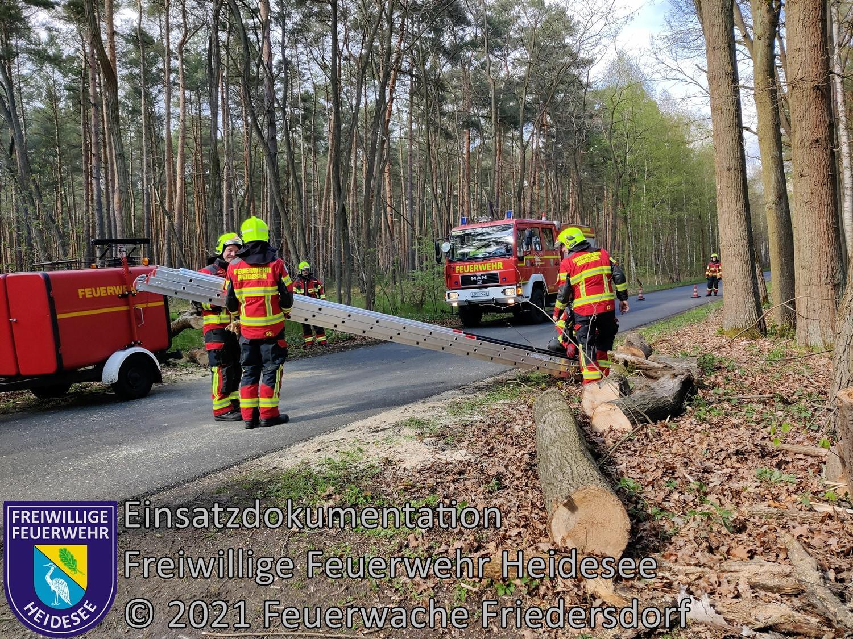Einsatz 49/2021 | Baum droht zu stürzen | Dolgenbrodt Blossiner Straße | 07.05.2021