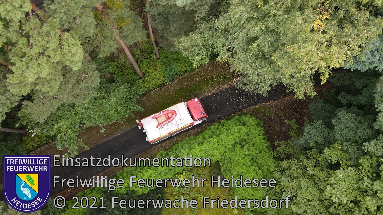 Einsatz 121/2021 | Baum droht zu stürzen | Dolgenbrodt Am Seekorso | 16.09.2021