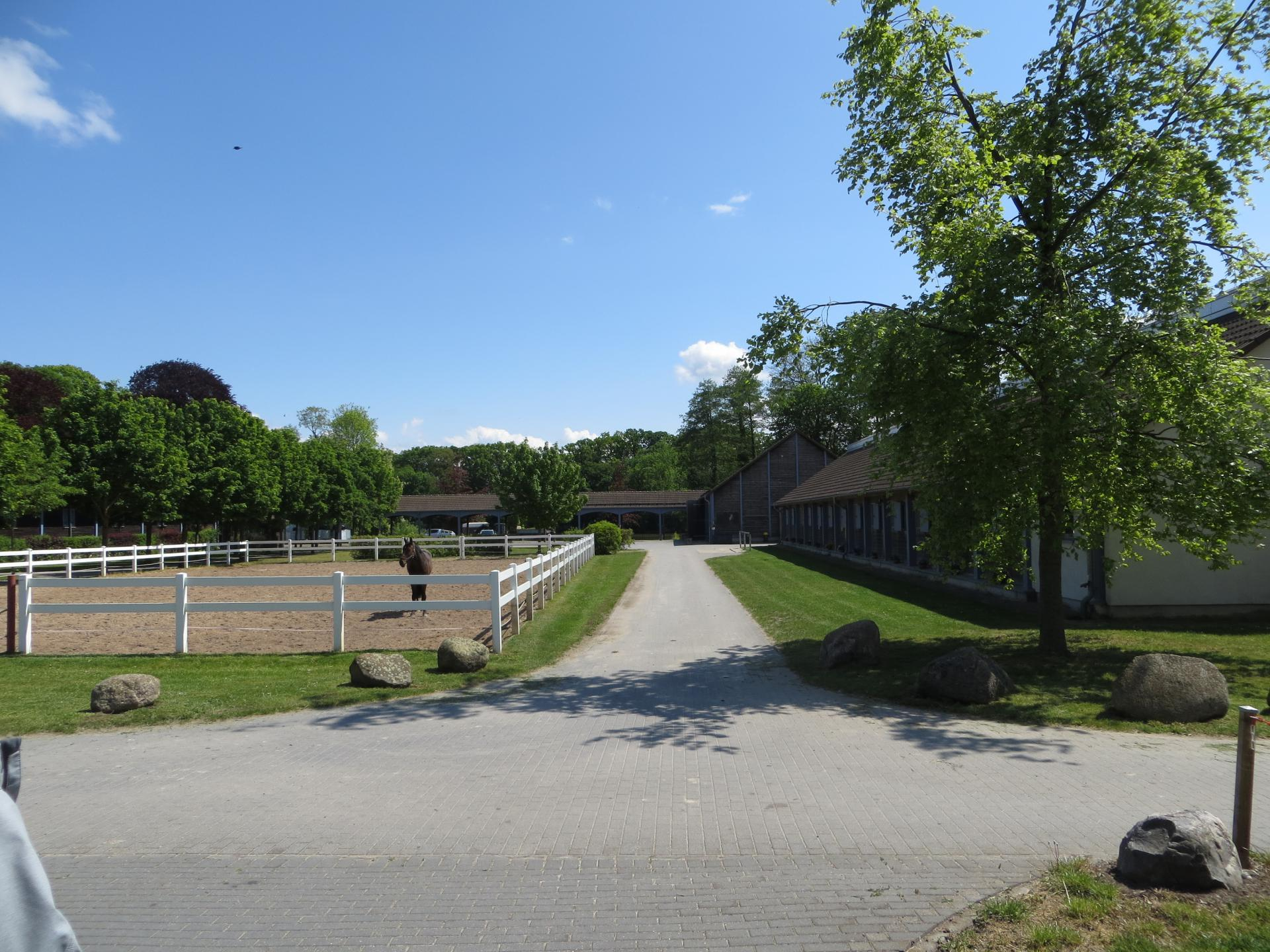 Blick auf den Pferdehof   Foto: Info Punkt Lebus