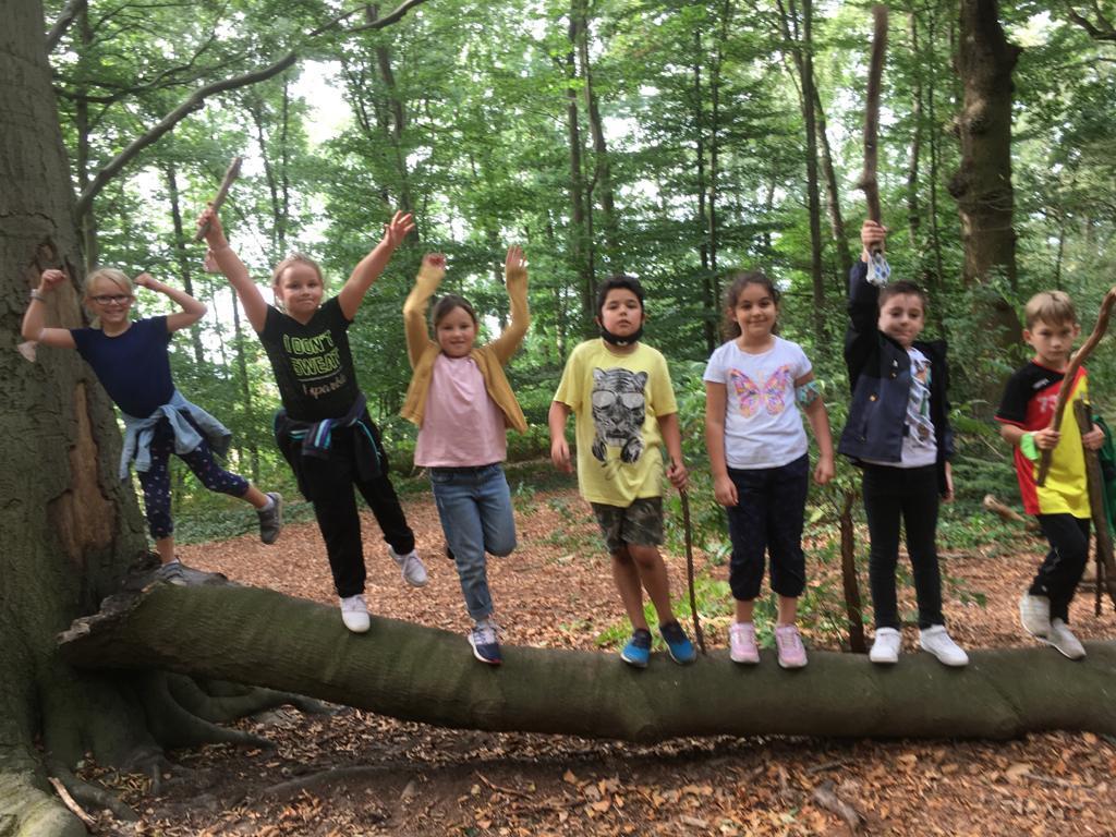 Sport im Wald 2