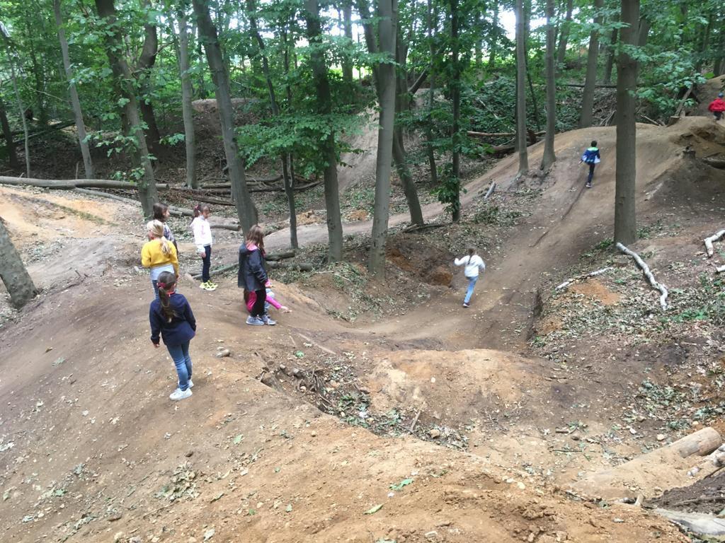 Sport im Wald 3