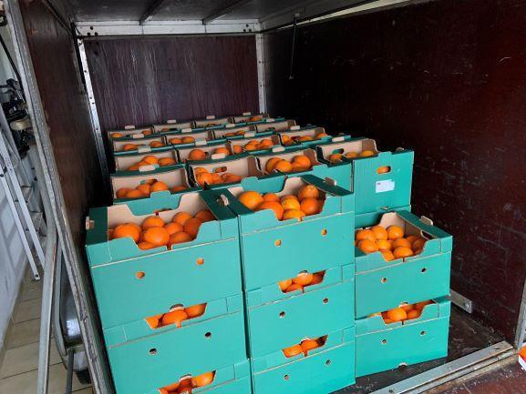 Abholung der Orangen
