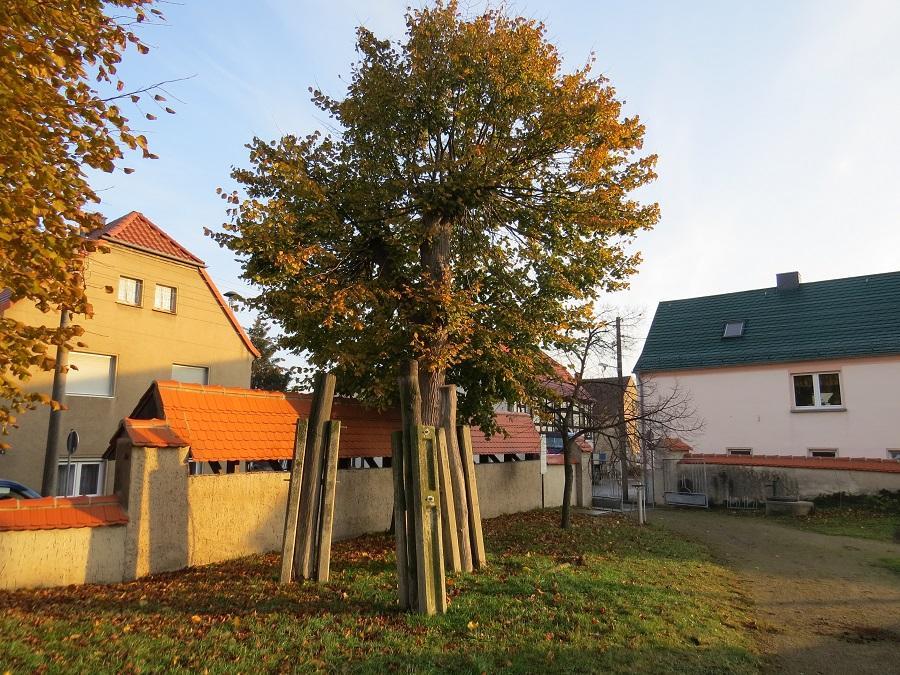 2020-Storchenhorst-Malkwitz-03