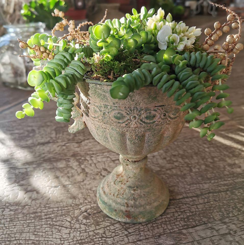Blatt und Blüte Floristikshop