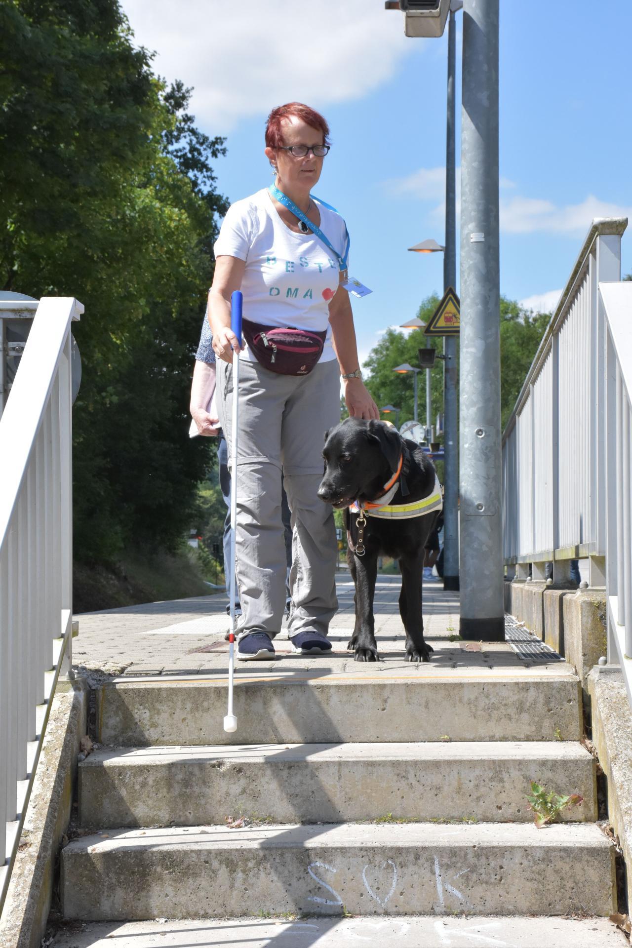Gudrun mit dem schwarzen Labrador Niko beim Treppen gehen