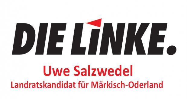 2021_Landrat_Linke