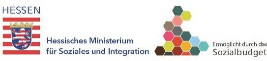 Logo HMSI:klein