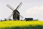 Mühle Pudagla