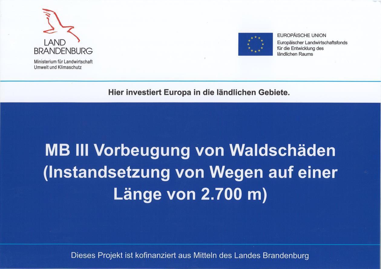 Waldwege-Instandsetzung2020