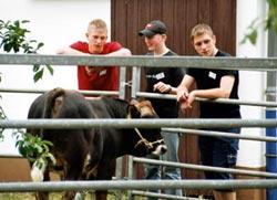 Bundesfachschule für Vieh- und Fleisch