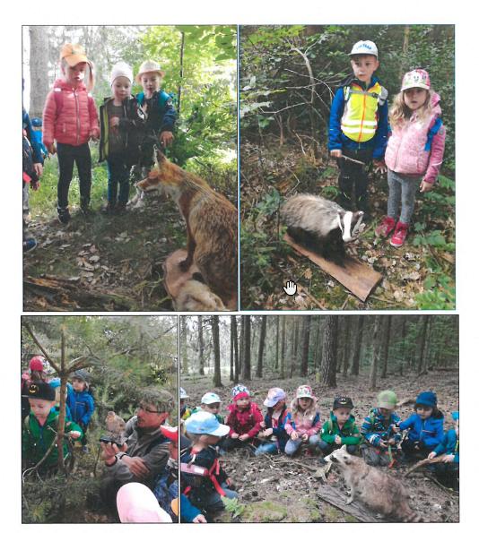 Waldtag Kinderarche 1