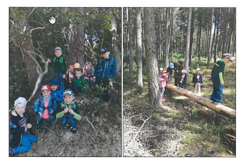 Waldtag Kinderarche 2