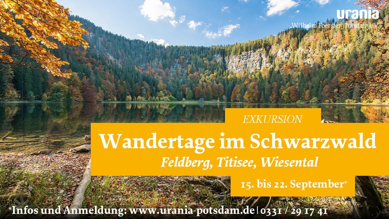 20-09-15_22 Schwarzwald