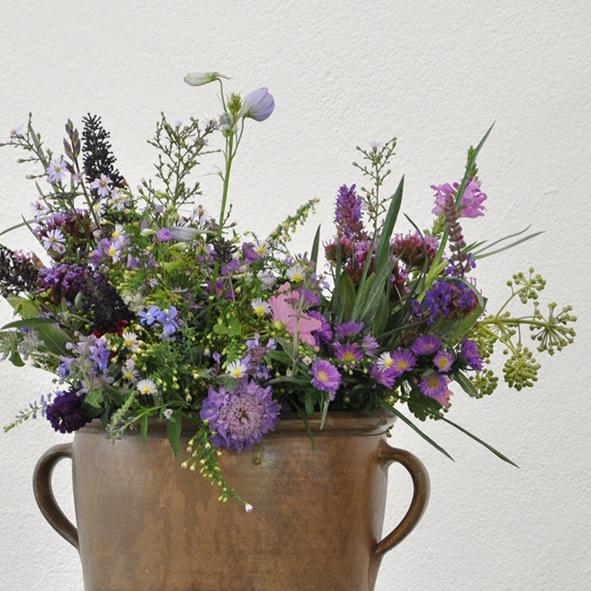 Gartenschönheit in Vasen