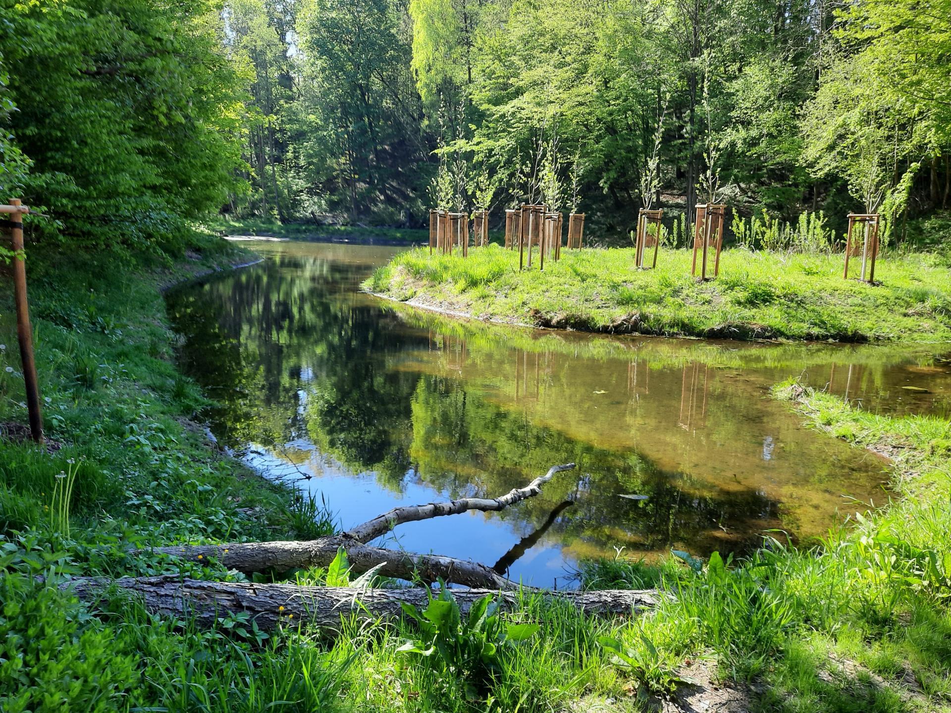 Altes Waldbad