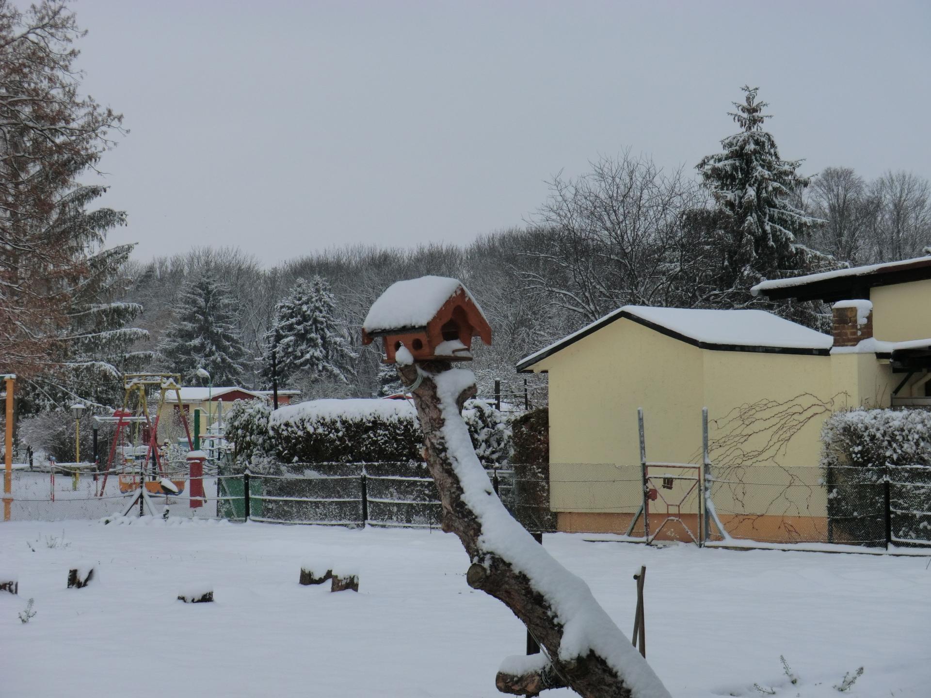 Winterliche Idylle im Kleingartenverein
