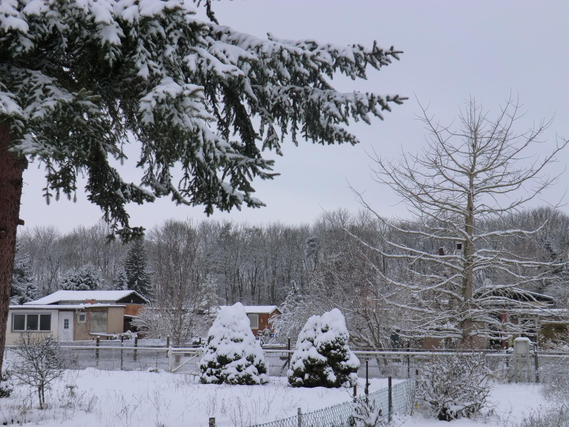 Kleingärten in Winterruhe
