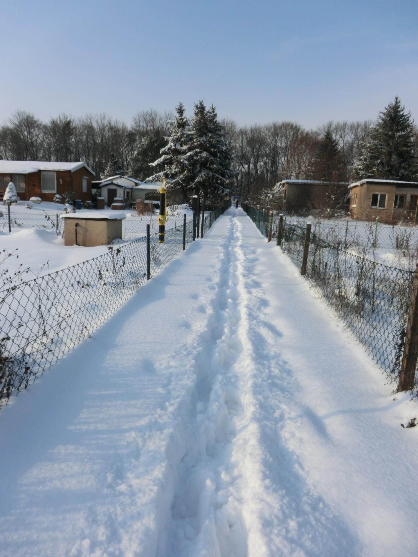 Tief verschneiter Gartenhauptweg