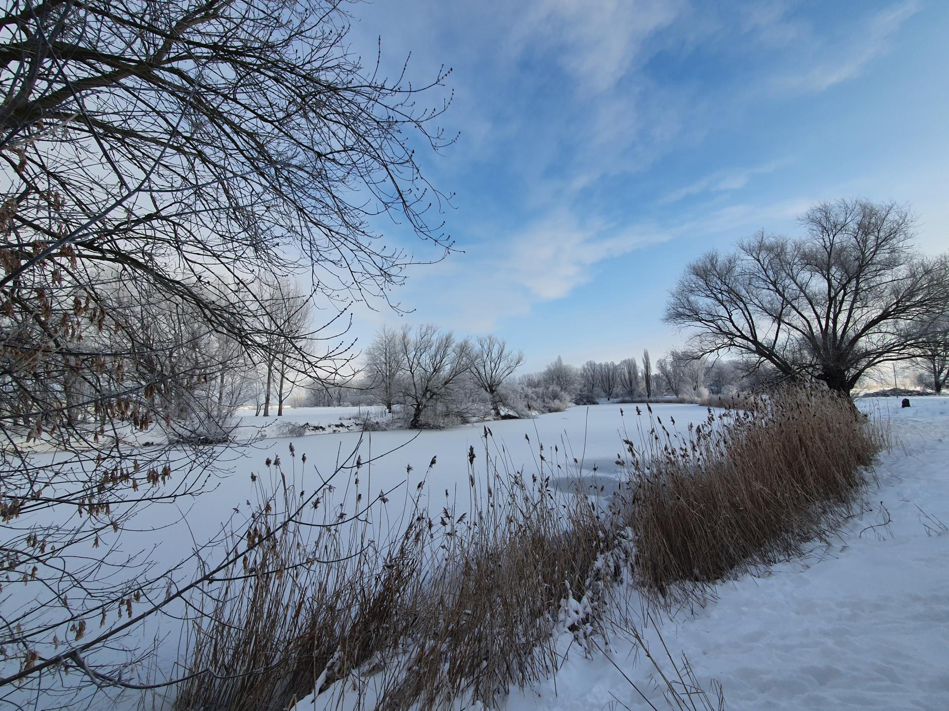 Winter 2021-1
