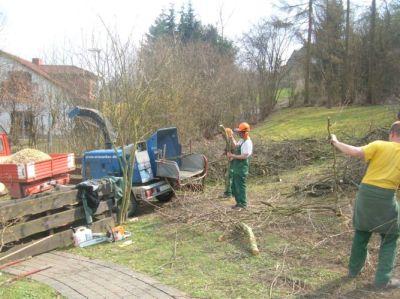 Baumpflege 8