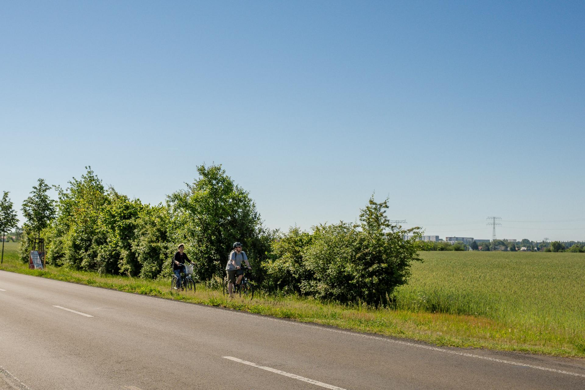 Radfaher auf der Ahrensfelder Straße