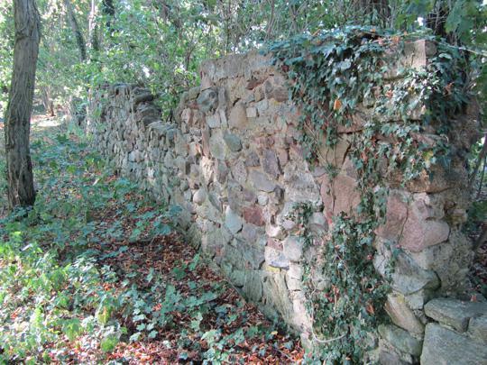 Hirschfelde im Park 2