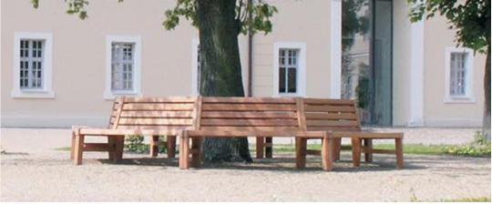 Planned tree-side bench