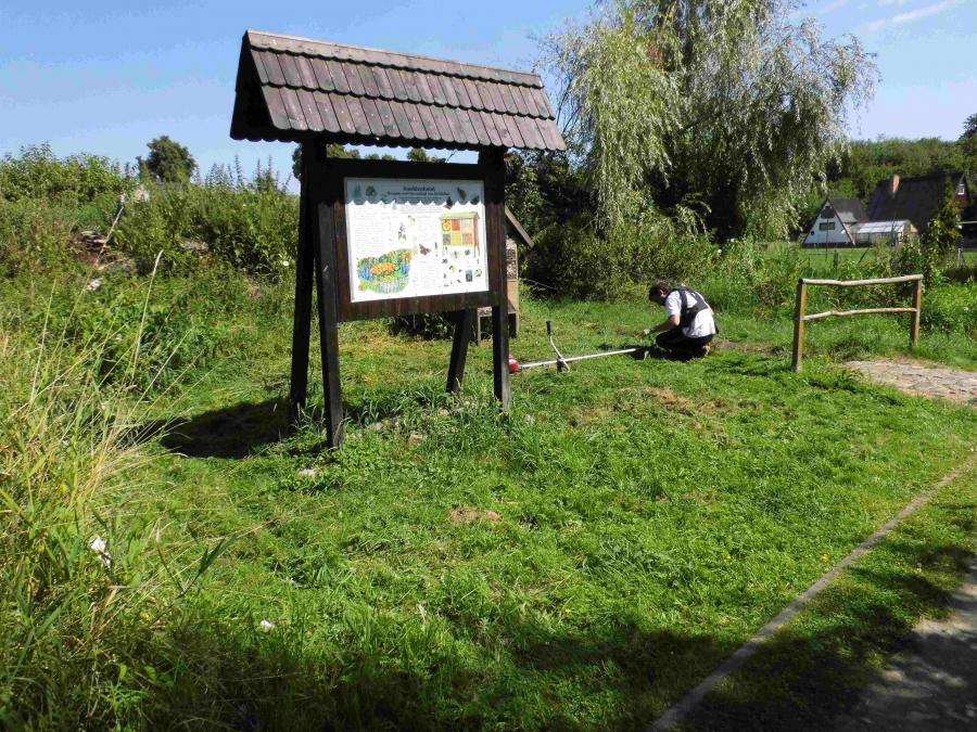 Michel Kocerka beim Freischnitt am Rundweg umd den Löhmer Haussee