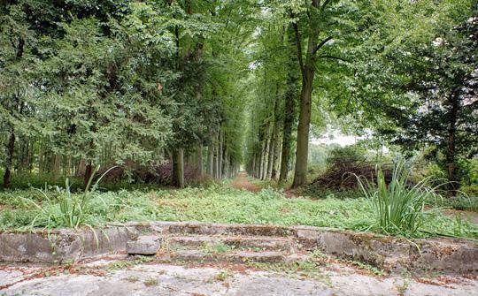 Dawna główna oś widokowa Parku –  na pierwszym planie pozostałości fontanny