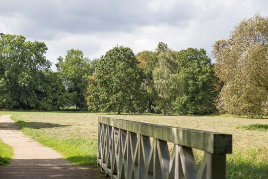 W parku w Blumberg